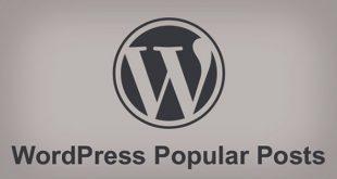 wordpress popular posts 310x165 - افزونه فارسی نمایش محبوبترین مطالب wordpress popular posts